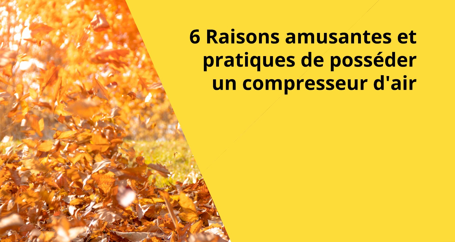 Raisons compresseur